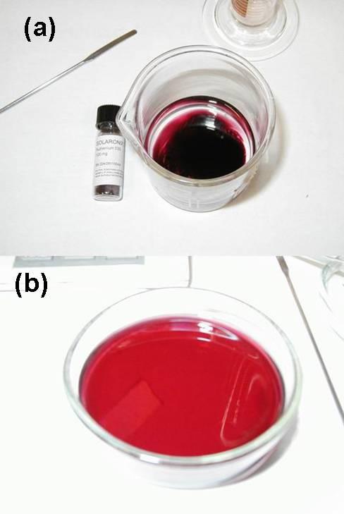 dye-standar.jpg
